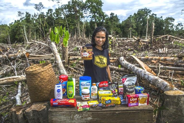 Het palmolie probleem